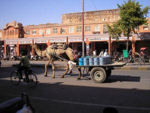 Straatbeeld van Jaipur, die vanwege de kleur van de gebouwen Pink City wordt genoemd.
