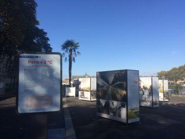 Les Berges de Seine: palmbomen op linkeroever van de Seine.